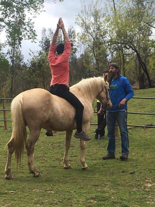 taller de equitación montaña